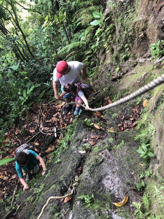National Park of American Samoa tuafanua trail