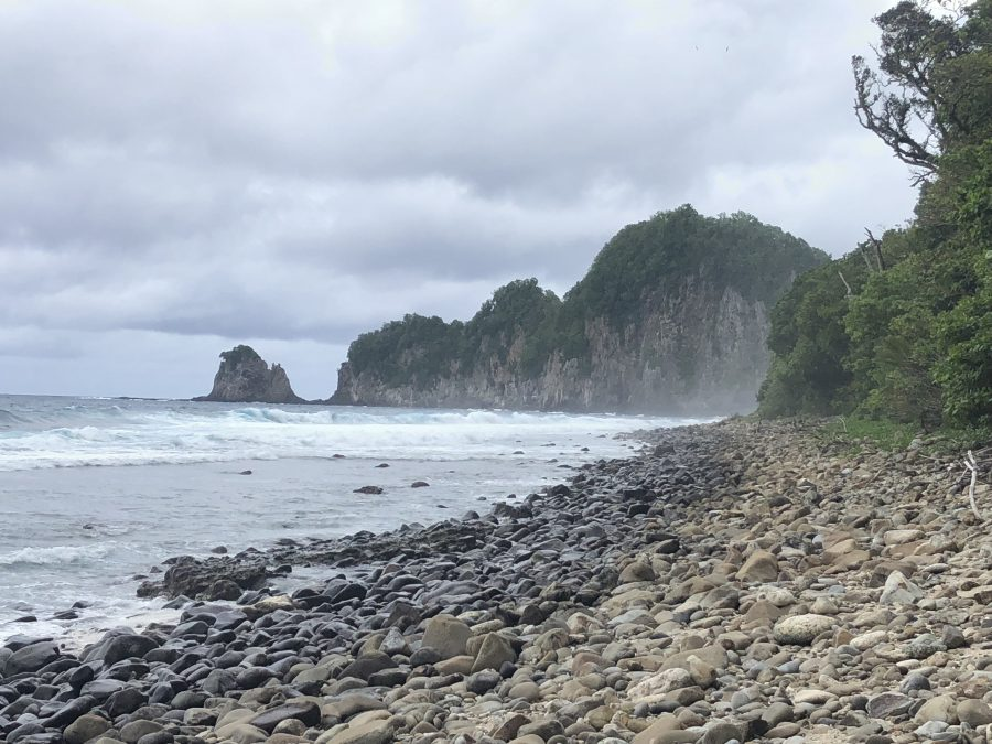 National Park of American Samoa kids hiking trail