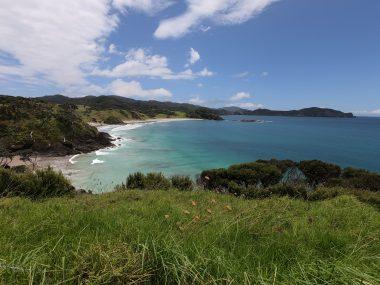 Elliot Bay New Zealand