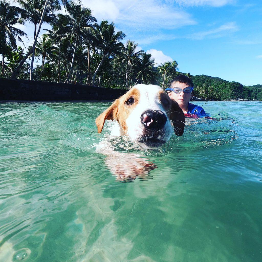 Coconut Mutts American Samoa